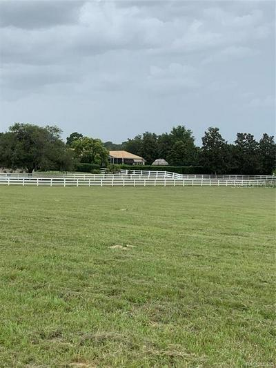 594 N SPEND A BUCK DR, INVERNESS, FL 34453 - Photo 2