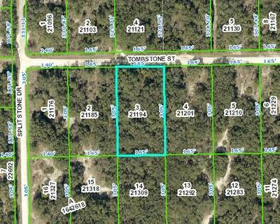 TOMBSTONE ST, WEBSTER, FL 33597 - Photo 1