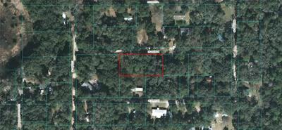SE 105TH LN, Ocklawaha, FL 32179 - Photo 1