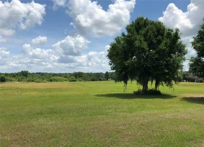 12334 STONELAKE RANCH BLVD, Thonotosassa, FL 33592 - Photo 2