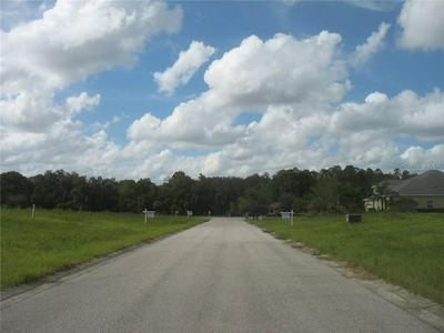 12706 MCINTOSH GROVES LN, THONOTOSASSA, FL 33592 - Photo 2