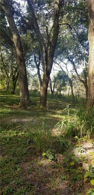 N US HIGHWAY 301, THONOTOSASSA, FL 33592 - Photo 2