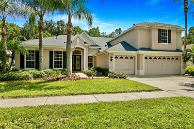 19221 AUTUMN WOODS AVE, TAMPA, FL 33647 - Photo 1