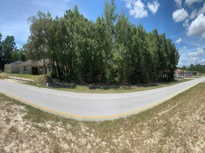 TBD MARION OAKS TRAIL, Ocala, FL 34473 - Photo 2