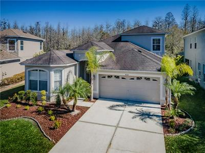 4332 WATERVILLE AVE, WESLEY CHAPEL, FL 33543 - Photo 2