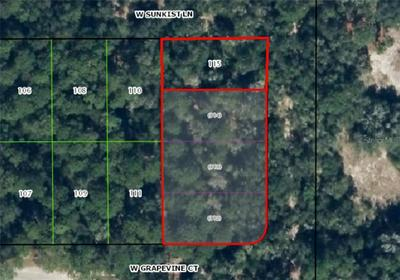 12018 N PEARTREE TER, DUNNELLON, FL 34433 - Photo 1