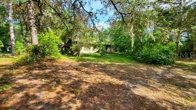 11382 E HIGHWAY 25, Ocklawaha, FL 32179 - Photo 1