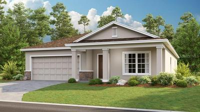 222 SPARROW HAWK DR, Groveland, FL 34736 - Photo 1