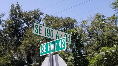 SE 190TH AVE, WEIRSDALE, FL 32195 - Photo 2