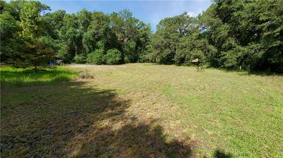 11382 E HIGHWAY 25, Ocklawaha, FL 32179 - Photo 2