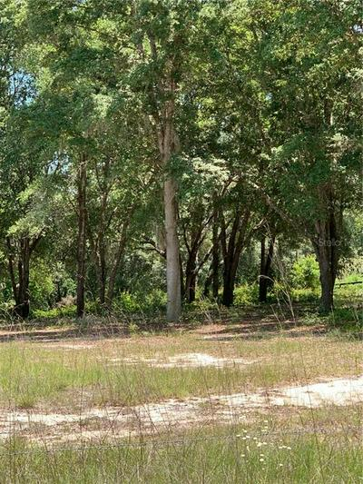41906 OUTLAW LN, Weirsdale, FL 32195 - Photo 1