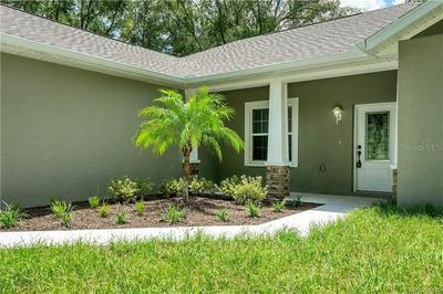 4390 S LECANTO HWY, LECANTO, FL 34461 - Photo 2