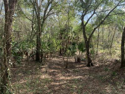 SW HORSE CREEK ROAD, ARCADIA, FL 34266 - Photo 1