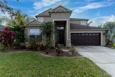 4033 WATERVILLE AVE, WESLEY CHAPEL, FL 33543 - Photo 2