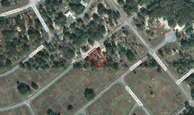 00 MALAUKA LOOP, Ocklawaha, FL 32179 - Photo 1