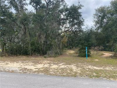 ADAMS STREET, Astatula, FL 34705 - Photo 2