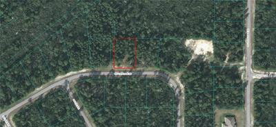 00000 SW 176TH LANE ROAD, OCALA, FL 34473 - Photo 1