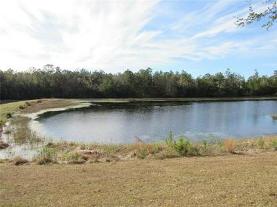 5777 SUMMIT VIEW DR, BROOKSVILLE, FL 34601 - Photo 2