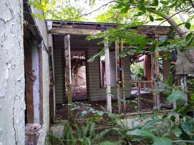 1849 PRINCETON ST, SEVILLE, FL 32190 - Photo 1