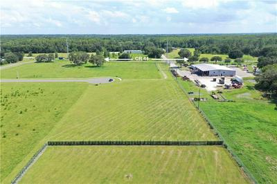 0 COBB DRIVE, Eustis, FL 32736 - Photo 2