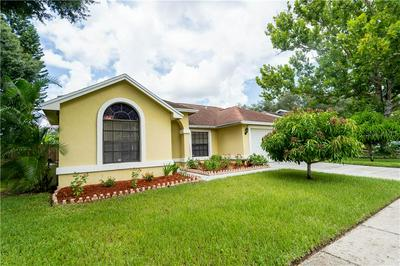 13306 KEARNEY WAY, Tampa, FL 33626 - Photo 2