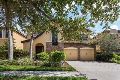 20303 CHESTNUT GROVE DR, TAMPA, FL 33647 - Photo 2