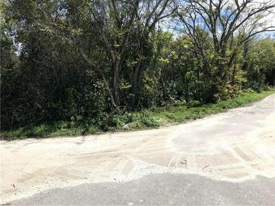 JAMES STREET, De Leon Springs, FL 32130 - Photo 2