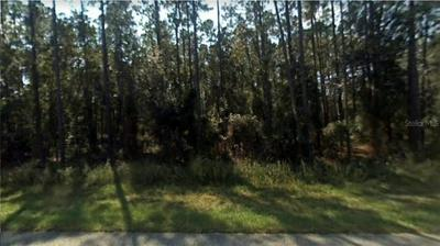 SW LITTLE CLIFFS DRIVE, Dunnellon, FL 34431 - Photo 1