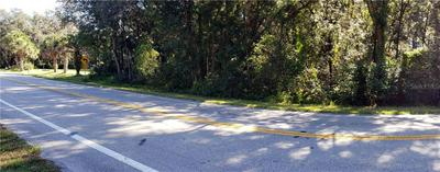 30302 COUNTY ROAD 435, Mount Plymouth, FL 32776 - Photo 2