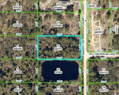 RAMSEY ROAD, WEEKI WACHEE, FL 34614 - Photo 1