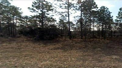 3000 W HIGGINS PL, CITRUS SPRINGS, FL 34433 - Photo 1