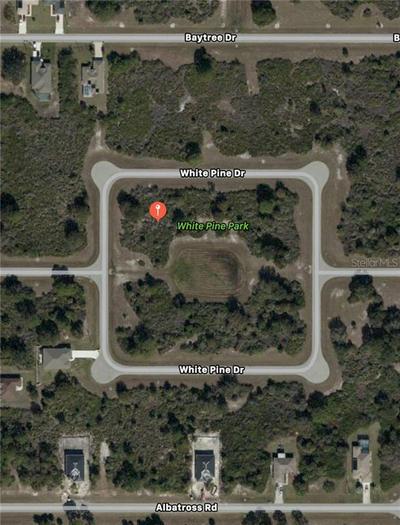 113 WHITE PINE DR, ROTONDA WEST, FL 33947 - Photo 2