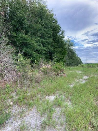 000 SE US HWY 19, INGLIS, FL 34449 - Photo 2