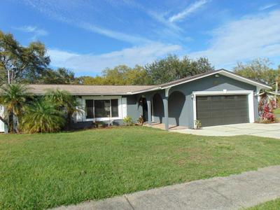 3142 SAN MATEO ST, CLEARWATER, FL 33759 - Photo 1