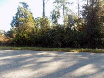 RAULERSON ROAD, SEVILLE, FL 32190 - Photo 1
