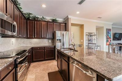 19249 EARLY VIOLET DR, TAMPA, FL 33647 - Photo 2