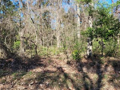 LOT 41 NW 129TH ST, CHIEFLAND, FL 32626 - Photo 2