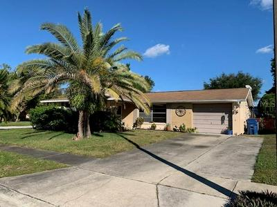 4238 GRAY SQUIRREL LN, NEW PORT RICHEY, FL 34653 - Photo 1