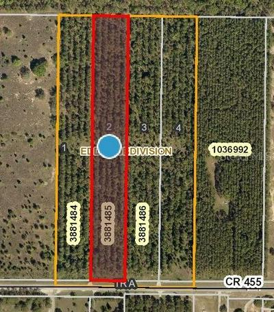 COUNTY ROAD 455, CLERMONT, FL 34711 - Photo 1