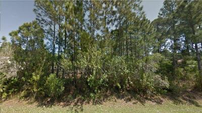 259 SAN SERVANDO AVE SW, Palm Bay, FL 32908 - Photo 1