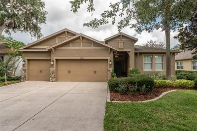 15738 STARLING WATER DR, Lithia, FL 33547 - Photo 1