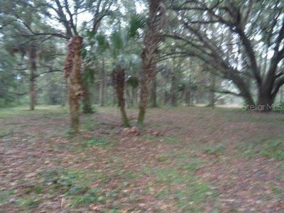 22677 NW 87TH AVENUE RD, MICANOPY, FL 32667 - Photo 2