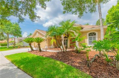 10354 ABBOTSFORD DR, Tampa, FL 33626 - Photo 2