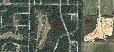 TBD MARION OAKS PASS, Ocala, FL 34473 - Photo 1