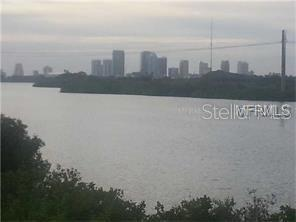 4838 TUSCAN LOON DR, Tampa, FL 33619 - Photo 2