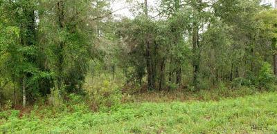 LOT 60 NE 98TH LANE, ARCHER, FL 32618 - Photo 1