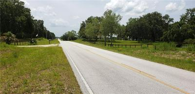 11751 SE LEVY COUNTY ROAD 337, Dunnellon, FL 34431 - Photo 2