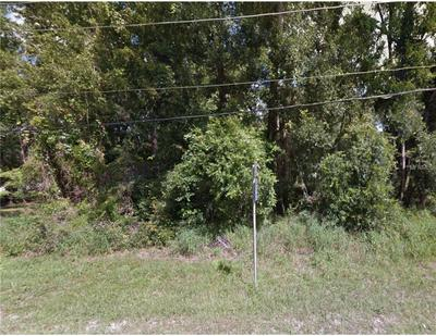 STATE ROAD 46, Mount Plymouth, FL 32776 - Photo 2