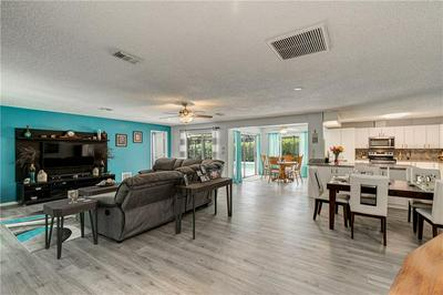 1111 BEAVER DR, TARPON SPRINGS, FL 34689 - Photo 2