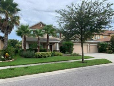 20029 OUTPOST POINT DR, TAMPA, FL 33647 - Photo 1